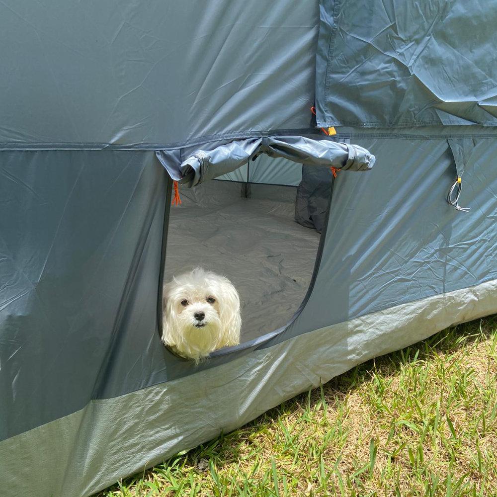 NTK Transform Canopy Tent PET Door