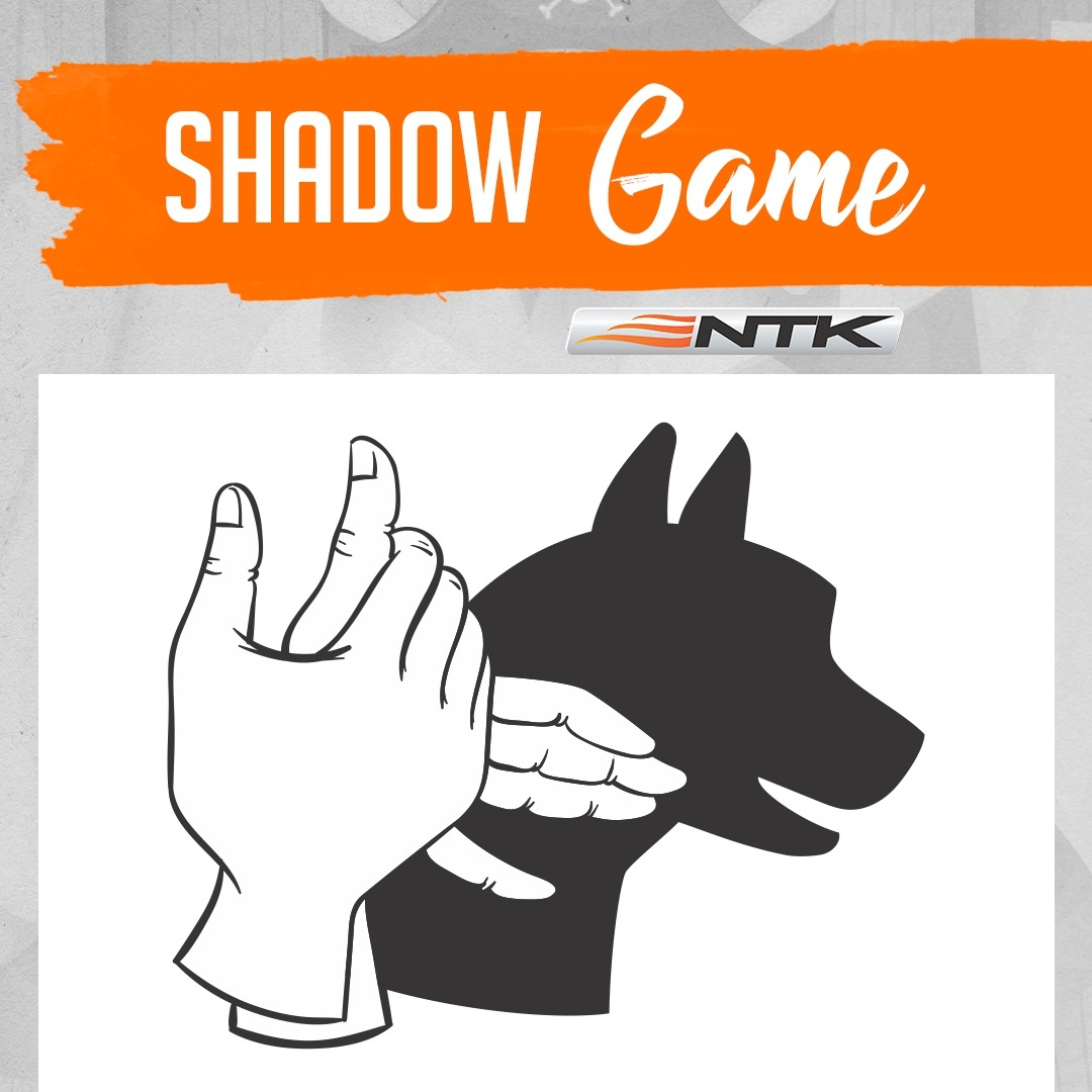 Easy shadow game